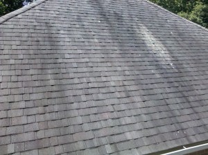 Gloeocapsa_Magma_on_Shingles on roof Roof Cleaning Gulfport Mississippi
